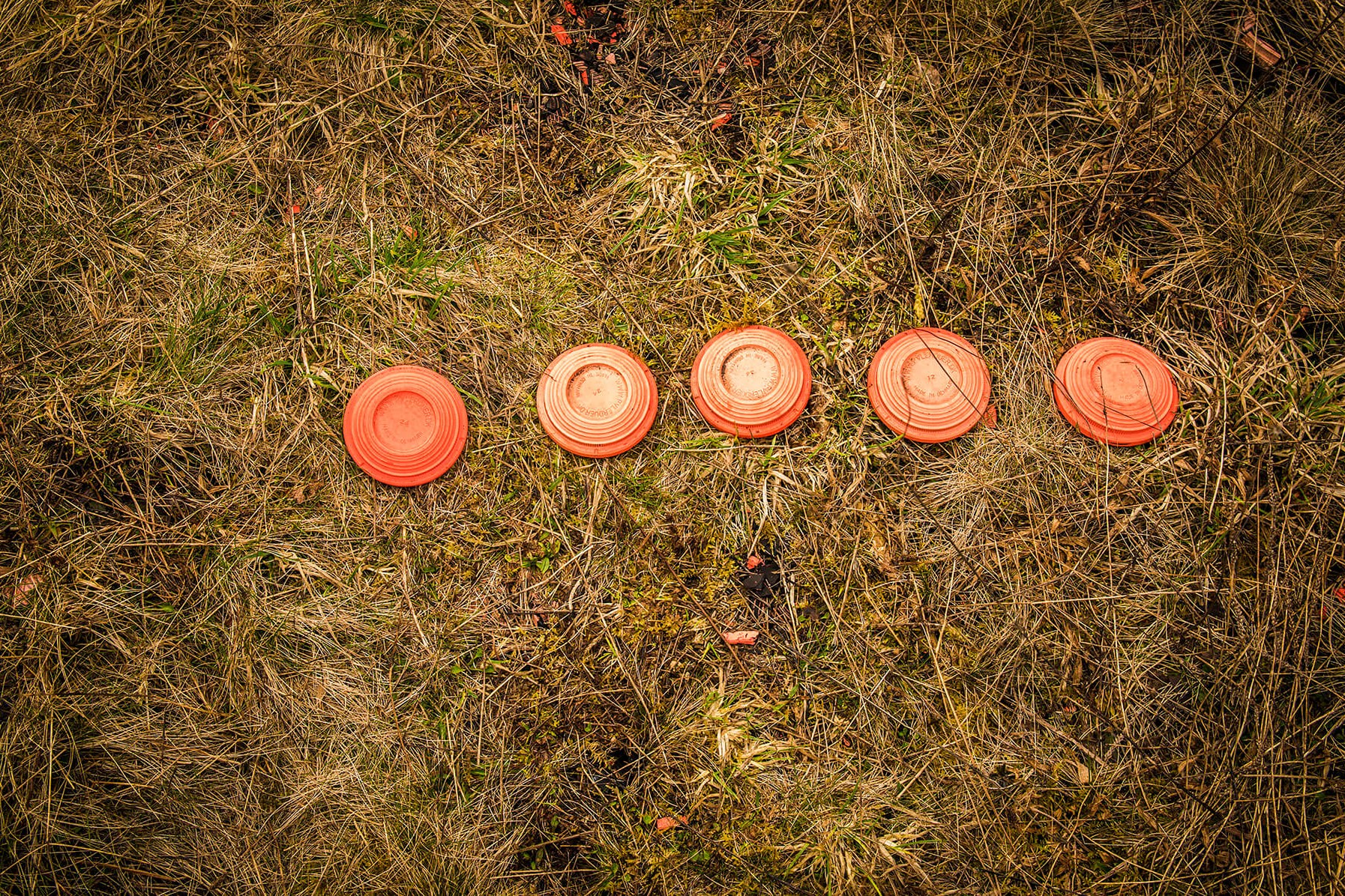 jagtskole-lerduer jagttegn jagtprøve